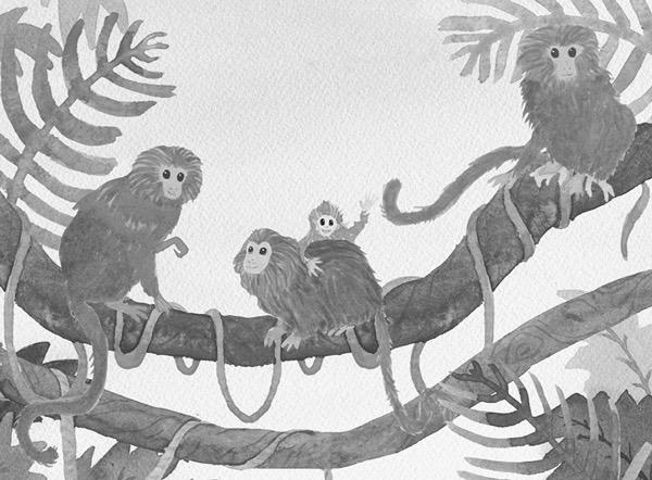 a-troop-is-a-group-of-monkeys